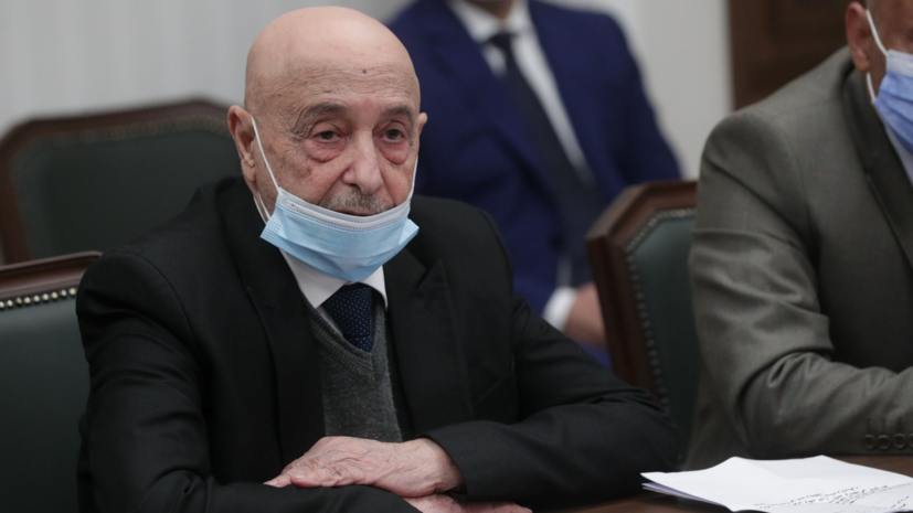 Депутаты России и Ливии обсудили вопросы межпарламентского сотрудничества