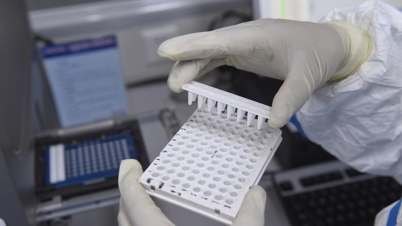 Учёный рассказал об исследовании иммунитета к COVID-19