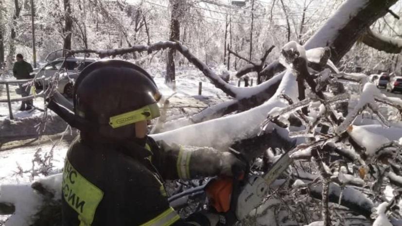 Восстановление электросетей в Приморье займёт ещё более недели