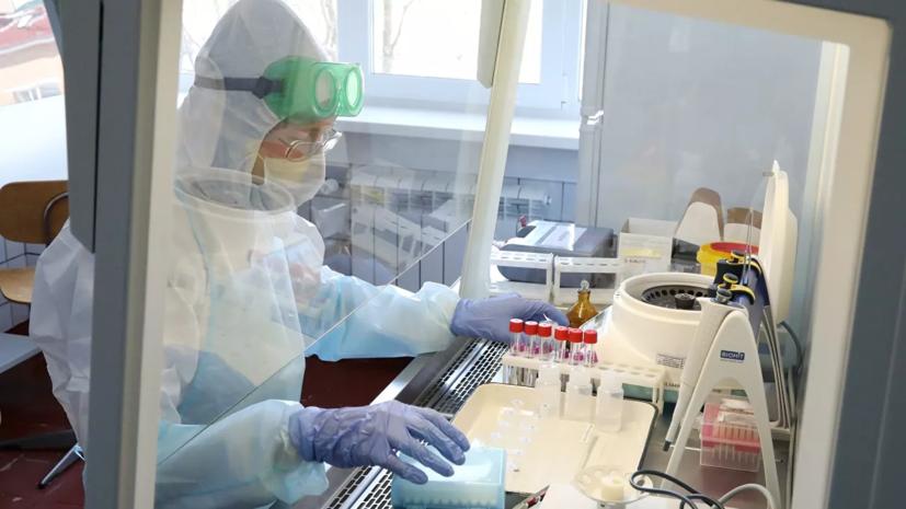 В Петербурге за сутки провели 24 218 тестов на COVID-19