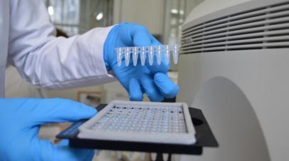 В Молдавии за сутки выявили 1215 новых случаев коронавируса