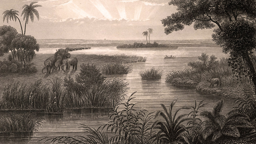 «Далёко, на озере Чад»: тест RT о российско-африканских отношениях