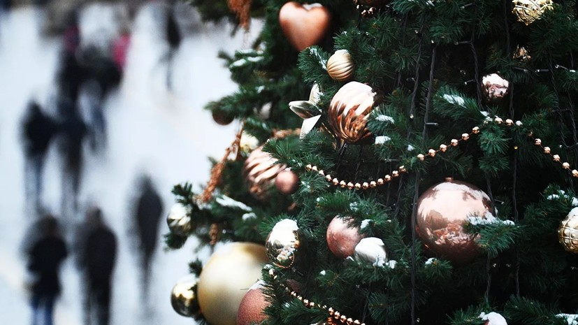 В Рослесинфорге заявили о снижении интереса к покупке новогодних ёлок