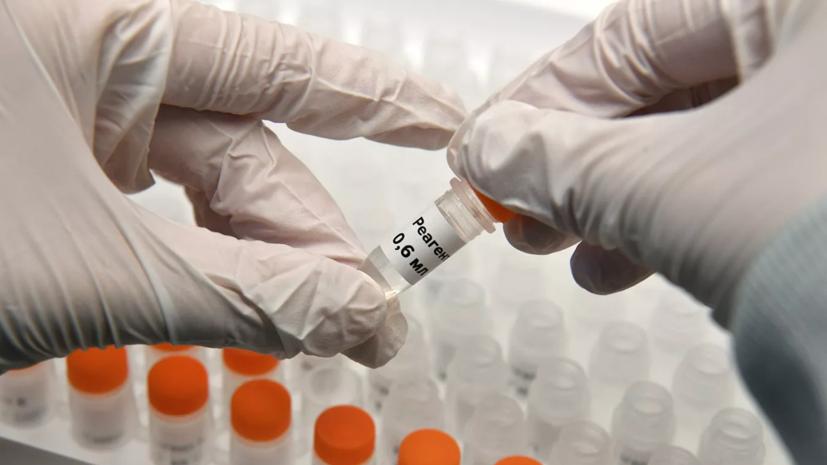 Иммунолог заявил о выходе России на плато по коронавирусу
