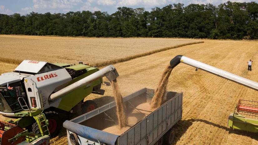 Опубликовано постановление кабмина о продлении продовольственного эмбарго