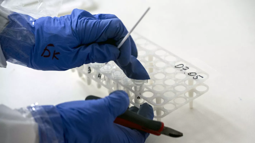 В Петербурге за сутки провели около 27 тысяч тестов на коронавирус