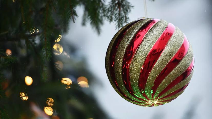 В Петербурге новогодняя ёлка для детей пройдёт в онлайн-формате