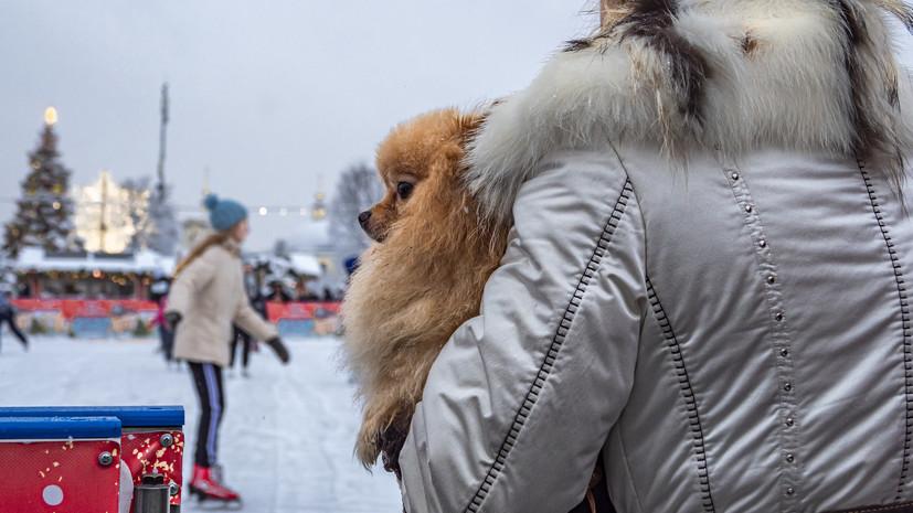 В Москве не планируют вводить ограничения на работу катков в праздники