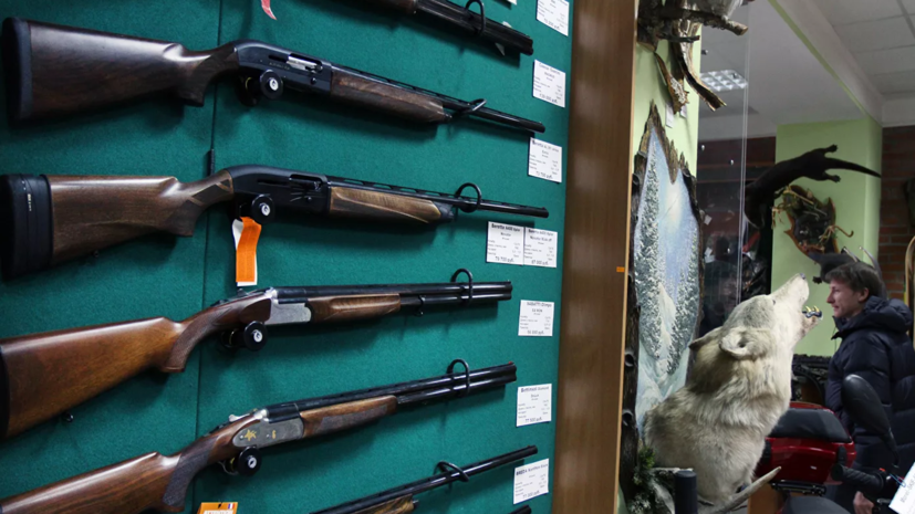 В ГД поддержали идею расширения списка документов для оформления лицензии на оружие