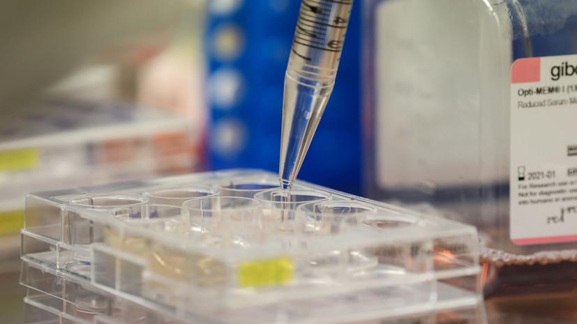 В Аргентине за сутки выявили 6843 случая коронавируса