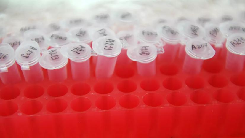 В Дании число выявленных случаев коронавируса достигло 131 606