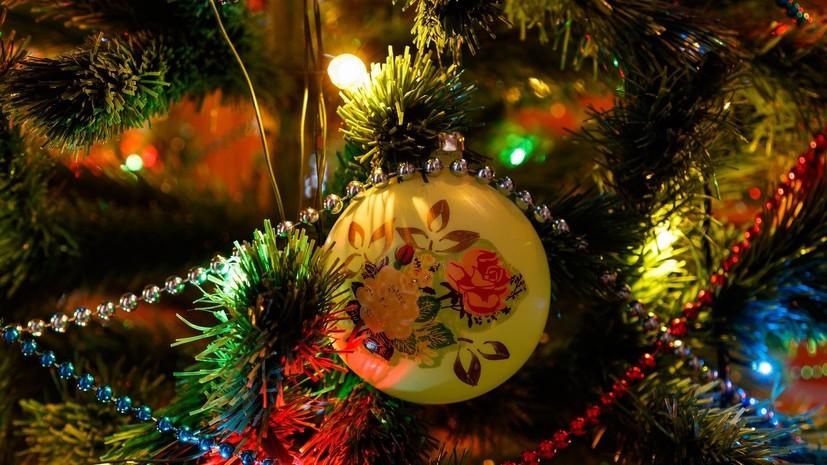 В Роспотребнадзоре рассказали, как встретить Новый год без вреда для здоровья