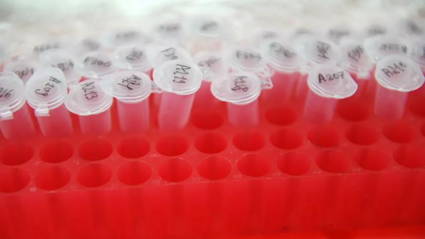 В Турцию отправят первую партию китайской вакцины от COVID-19