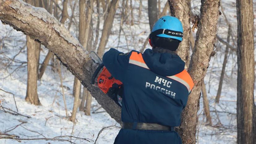 В Приморье планируют завершить ликвидацию последствий циклона в 2021 году