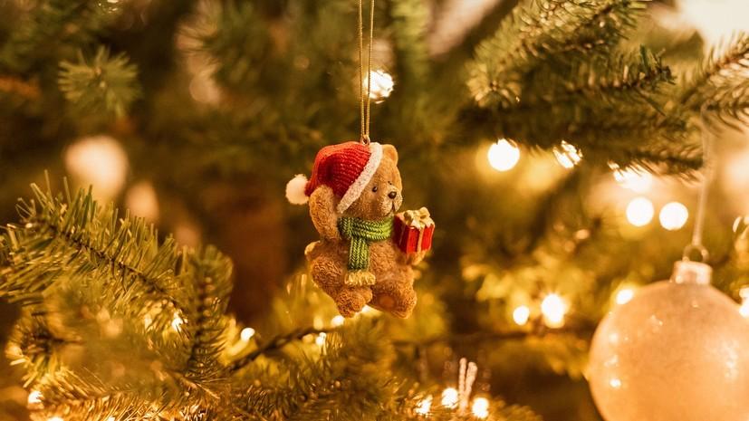 Диетолог дала рекомендации по выбору блюд в новогодние праздники