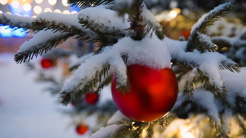 Дед Мороз и ёлка: тест RT об истории празднования Нового года в России