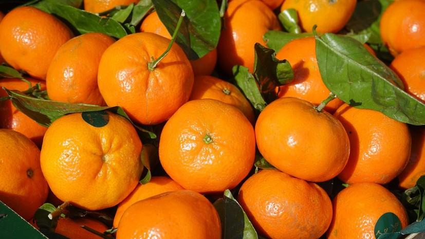 Медикам больницы в Удмуртии передали к Новому году более 2 т фруктов