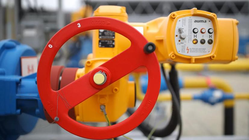 Компания-оператор оценила объёмы поставок по газопроводу через Сербию