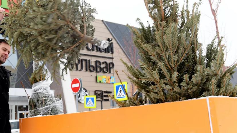 В Московском зоопарке запустили акцию по сбору ёлок