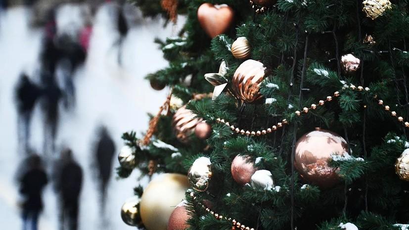 В Севастополе экопарк проводит акцию по сбору новогодних ёлок