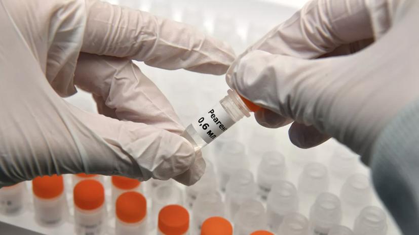 Более 95 млн тестов на коронавирус проведено в России