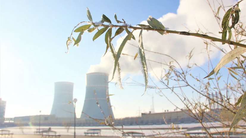 Первый энергоблок БелАЭС включили в сеть