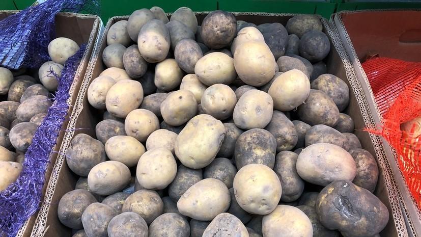 «Ъ»: производители предложили сетям продавать картофель «экономкласса»
