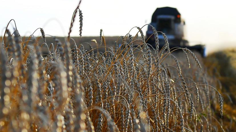 Россия с 1 марта повышает пошлину на вывоз пшеницы
