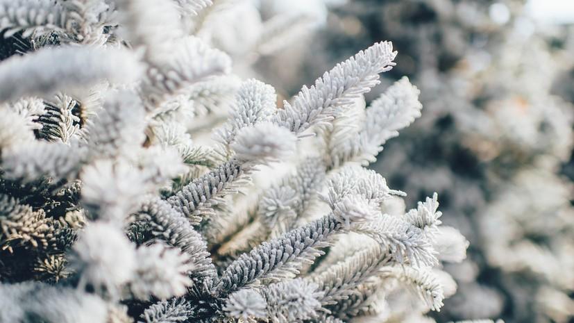 Спасатели предупредили о морозах до -31 ˚С в Ульяновской области