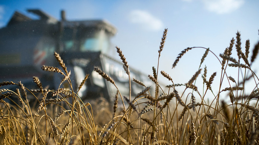 В Совфеде предложили увеличить финансирование программы развития сельских территорий