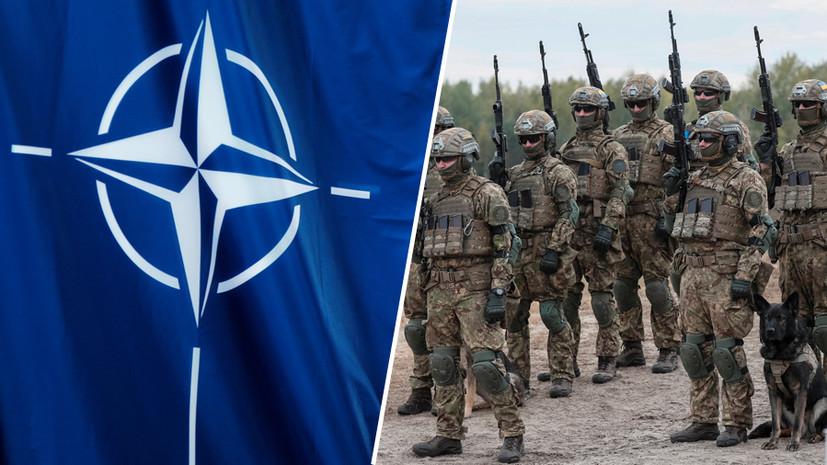 Форма политической пропаганды»: почему Зеленский заявил об «открытых дверях  НАТО» для Украины — РТ на русском