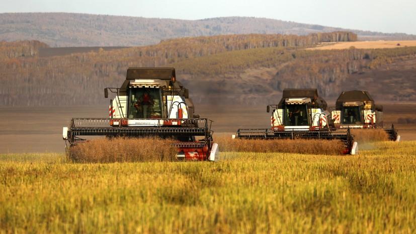 Власти Подмосковья оценили ситуацию в сельскохозяйственной отрасли