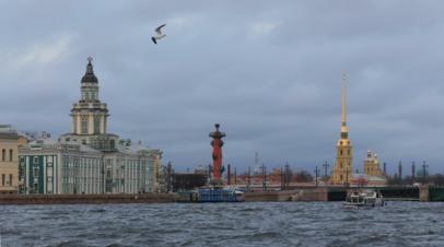 МЧС предупредило жителей Петербурга об усилении ветра