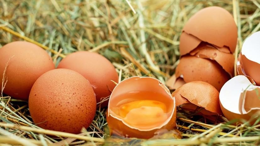 В Минсельхозе оценили рост цен на продукцию птицеводчества