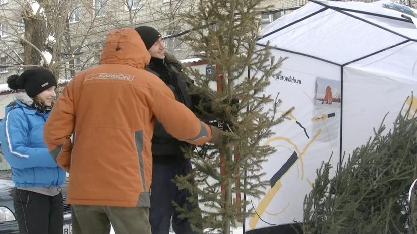 Более 44,5 тысяч ёлок отправили на переработку в Москве