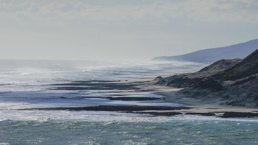 В Новой Зеландии объявили срочную эвакуацию из-за угрозы цунами