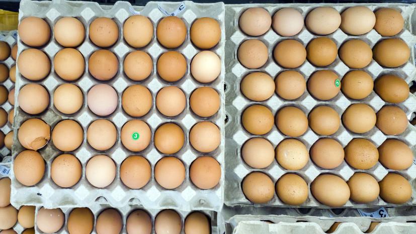 Эксперт спрогнозировал снижение цен на яйца и мясо птицы в России