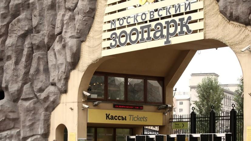 Московский зоопарк объявил о переходе на весенний график
