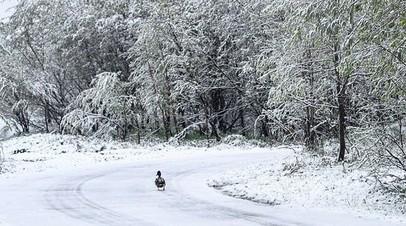 На Кольском полуострове ожидается мокрый снег и гололедица