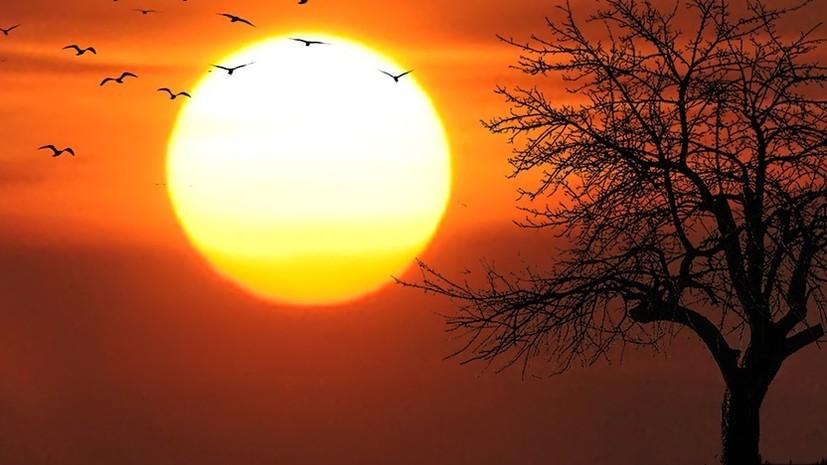 Врач напомнила об опасности активного солнца в мае