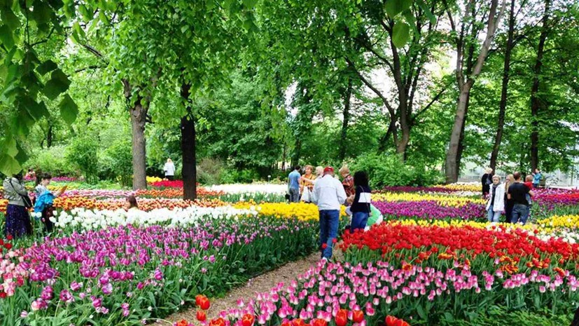 «Аптекарский огород» проведёт Весенний фестиваль цветов с 10 апреля по 31 мая