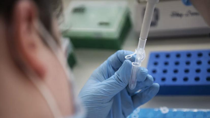 В России проведено более 122 млн тестов на коронавирус