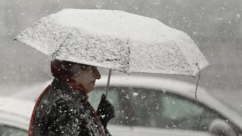 МЧС предупредило о сильном ветре и мокром снеге в Москве