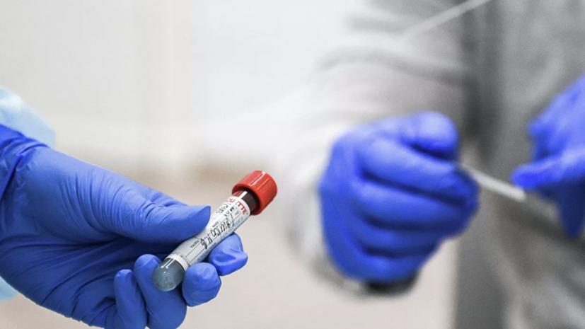 В России за сутки проведено 323 тысячи тестов на коронавирус