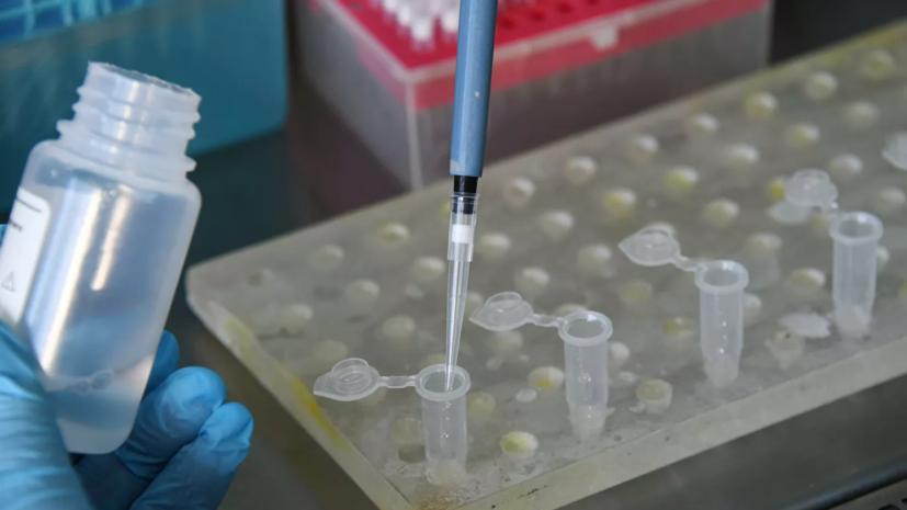В Румынии число случаев коронавируса превысило 1 млн