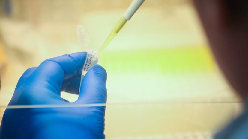 ВОЗ назвала число случаев заболевания коронавирусом в мире