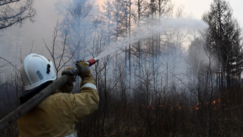 В Подмосковье объявили пожароопасный сезон