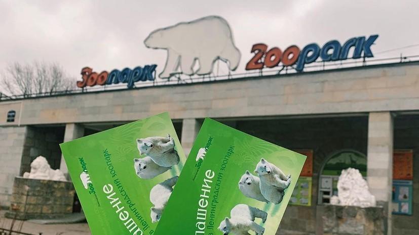 В Ленинградском зоопарке рассказали о ценах на билеты с 1 мая