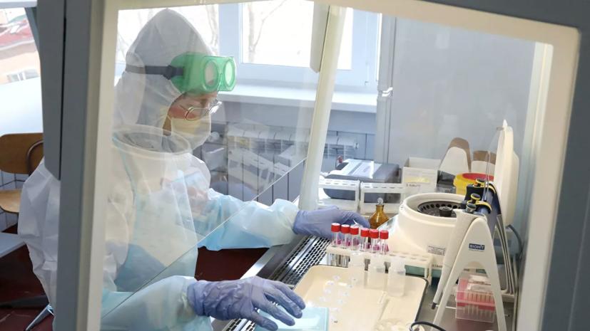 В России за сутки выявлено 8803 новых случая коронавируса