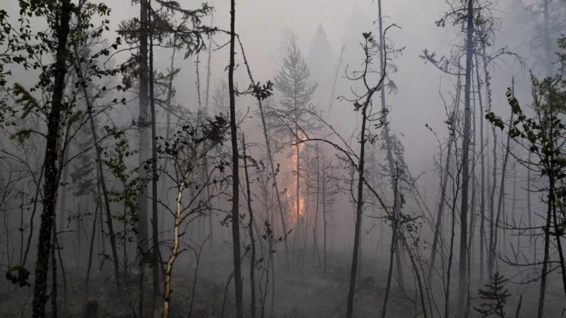 В Омской области поиск пожаров ведут с помощью беспилотников